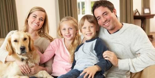 Cães ajudam a manter o equilíbrio emocional da família