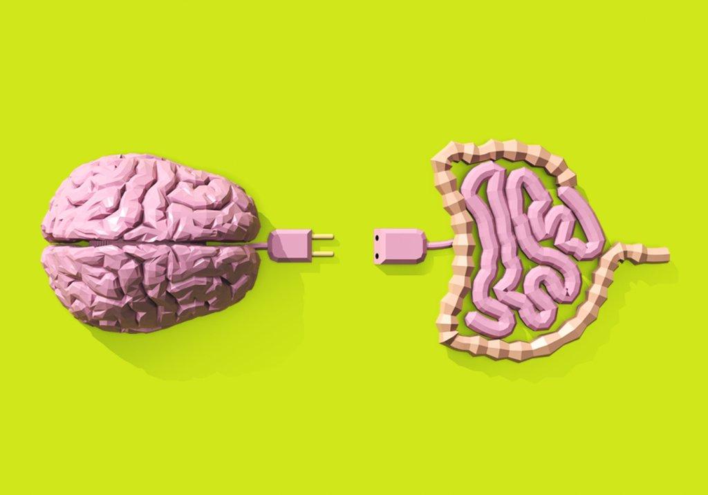 A incrível conexão cérebro-intestino | Veja Saúde