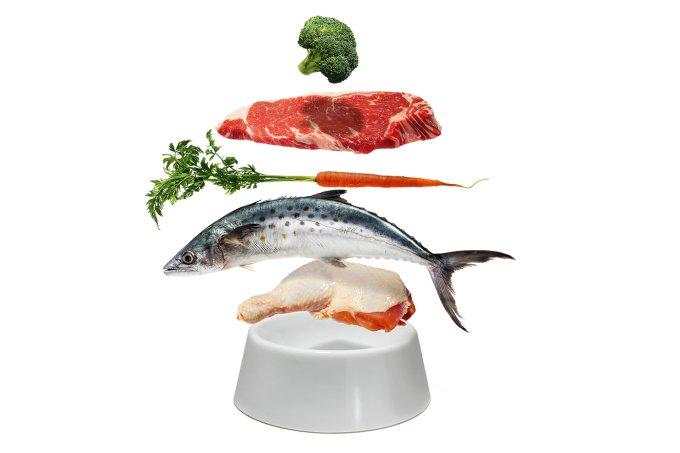Alimentação natural para animais
