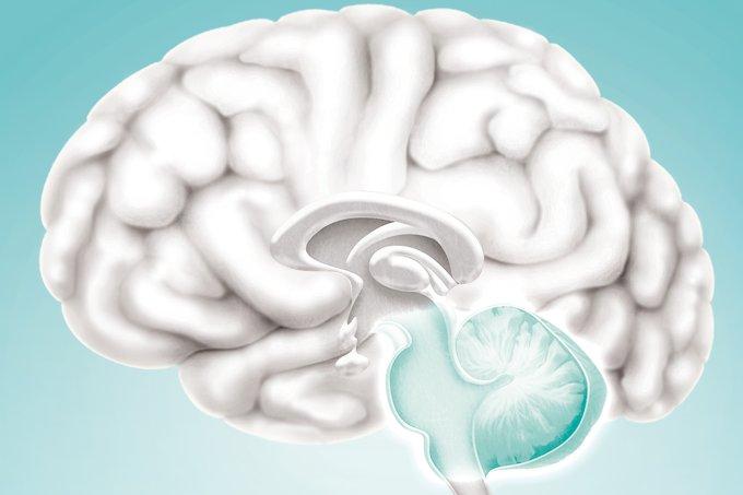 O que é a doença de Parkinson