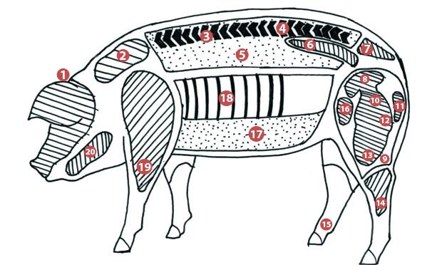 Partes do Porco