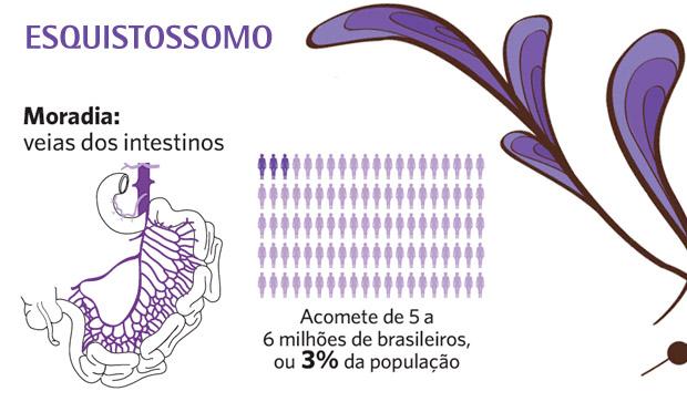 Esquistossomo