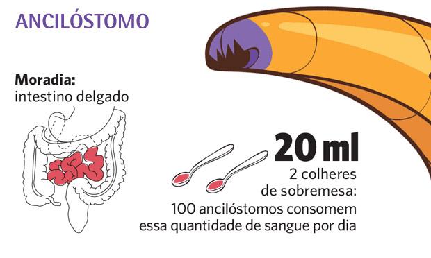 Ancilóstomo