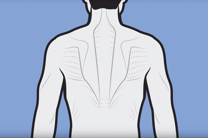 Exercícios para dor nas costas