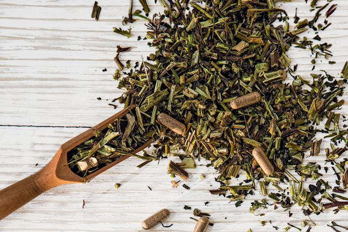 fitoterapicos planta medicinal