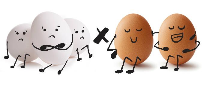 Consumir um ovo cozido por dia ajuda a reduzir a fadiga muscular e a ansiedade