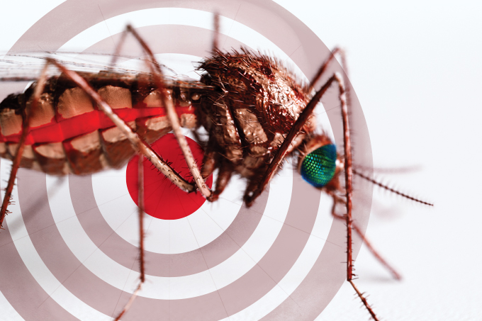 Arma contra zika, dengue e chikungunya