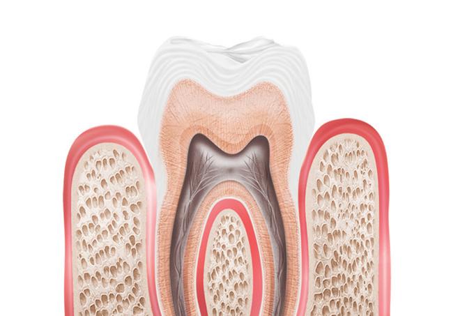 O que fazer com com um dente quebrado