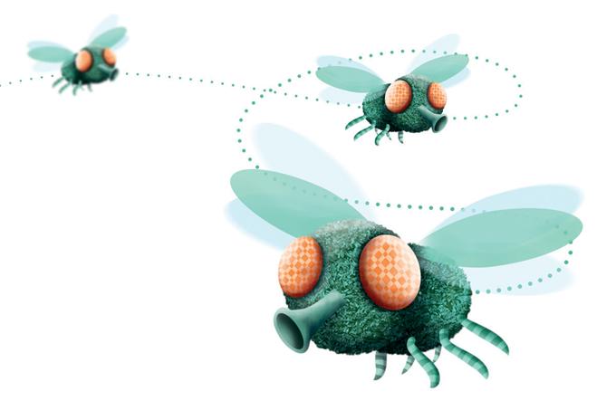 Moscas podem carregar 351 tipos de bactéria. E até espalhar gastrite