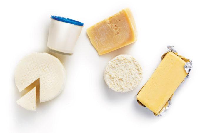 Queijos e outros produtos derivados do leite de búfala