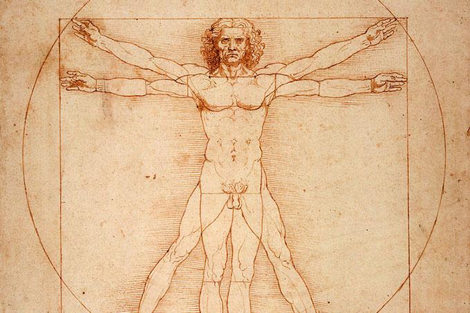 Descoberta do interstício: o novo órgão