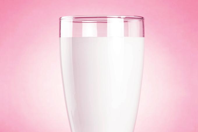 Benefícios do leite integral e seus derivados