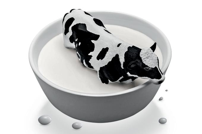 Novo leite teria uma proteína menos alergênica