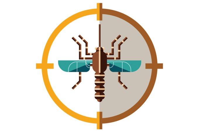 A transmissão da malária no Brasil