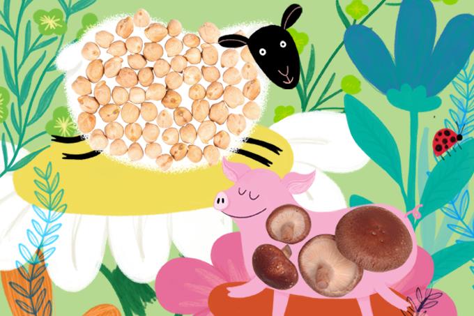 x animal capsulas