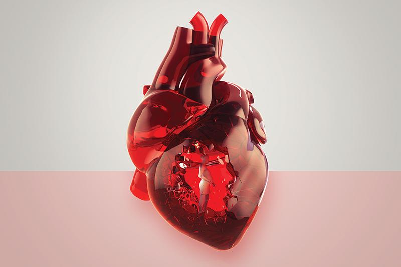 O período da gestação tem suas particularidades para o coração.