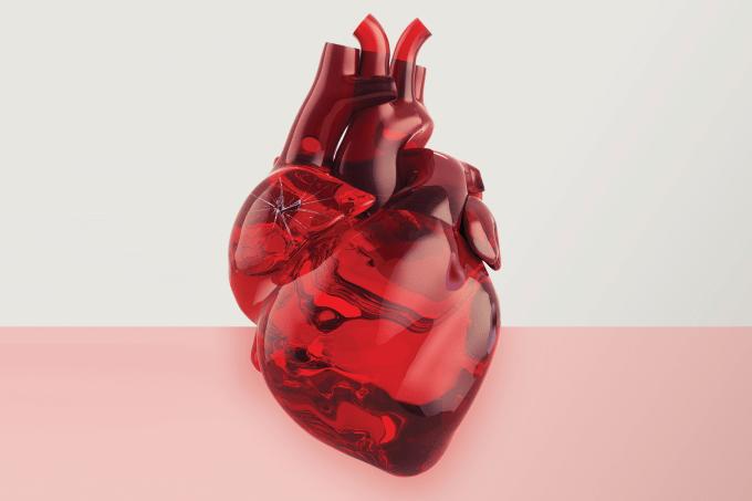 Fatpres de risco para doenças cardíacas