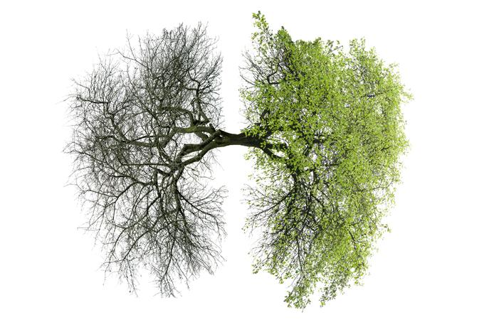 Combate ao fumo: as diferenças entre o câncer de pulmão