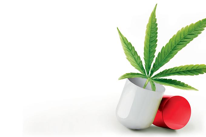 A Cannabis medicinal ainda gera muita discussão.