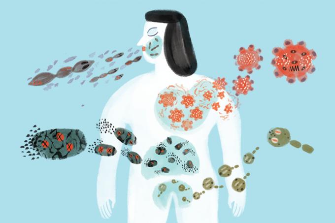 O que são fungos e quais doenças causam