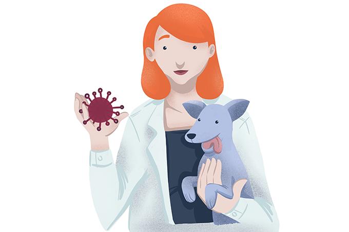 Como funciona o tratamento do câncer em animais?