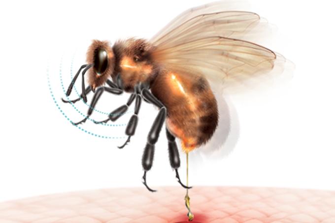 Soro para picada de abelha