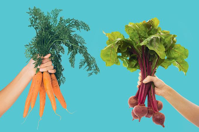 Nutrientes de cenoura e beterraba