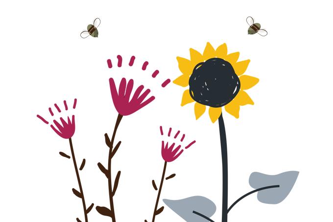 Por que devemos proteger as abelhas.