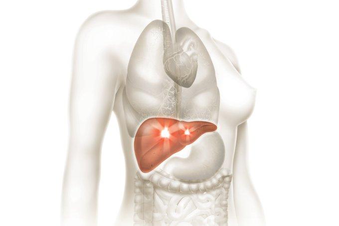 Protocolo de Limpeza do Fígado e da Vesícula