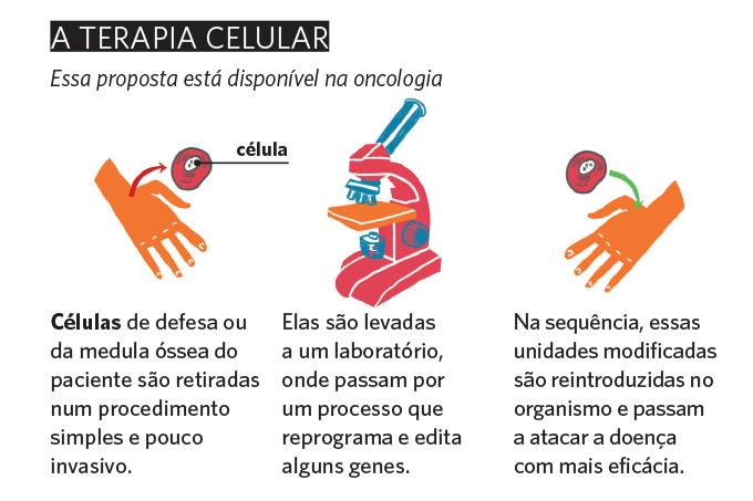 Genética - terapia celular