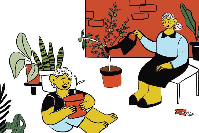Hortas cabem em qualquer espaço