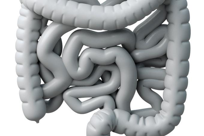 Incontinência fecal: causas, prevenção e tratamentos