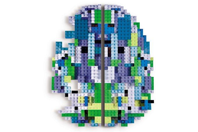 cérebro nicolelis