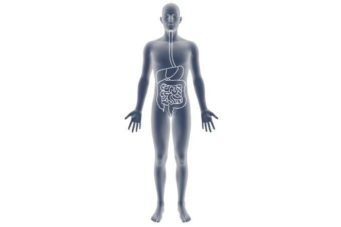 mapa doenças gastrointestinais nos mais velhos