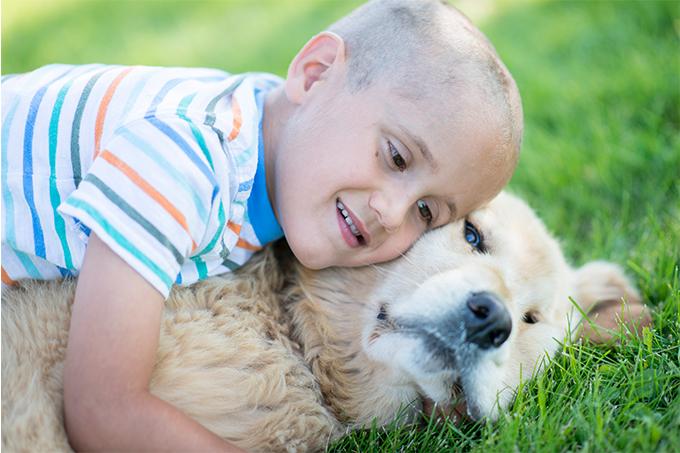 criança e cachorro tratamento câncer