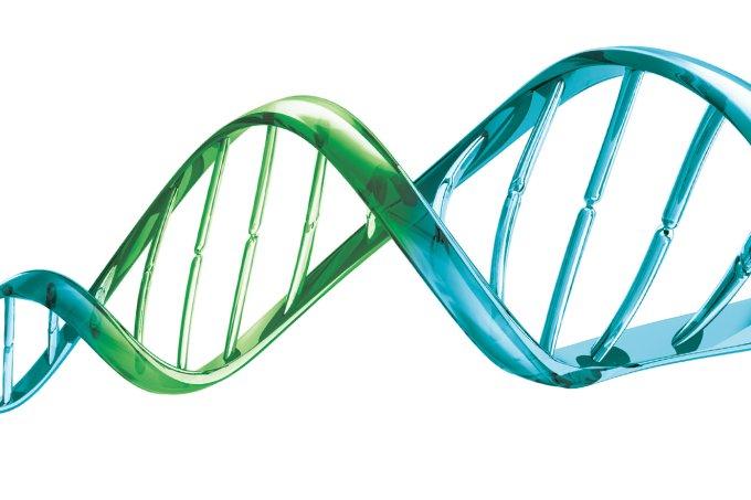 teste genético brasil