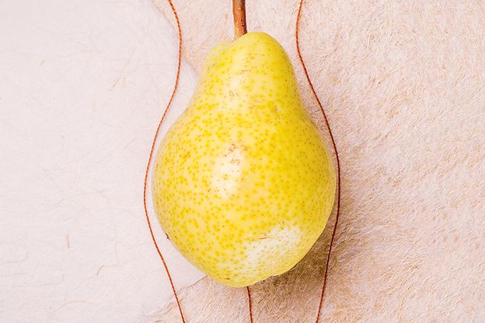 A relação entre fibras e fertilidade