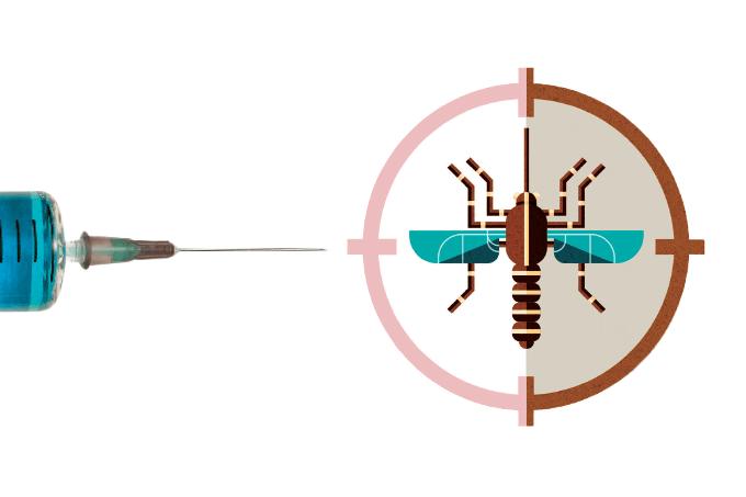 Vacina para dengue é eficaz?