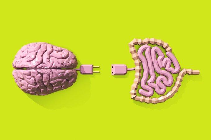 Probióticos contra ansiedade e depressão