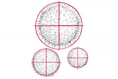 Covid-19: anticorpos e vacinas