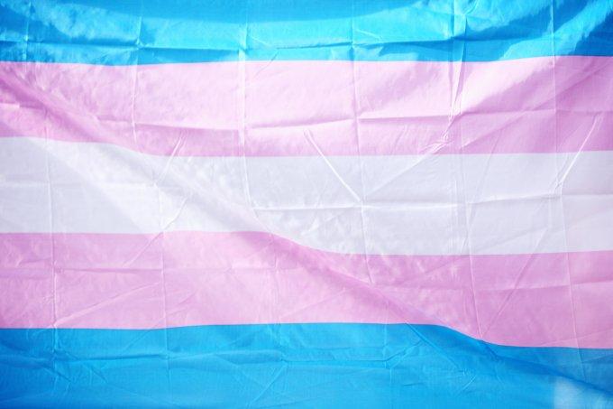 Dia da Visibilidade Trans 29 de janeiro