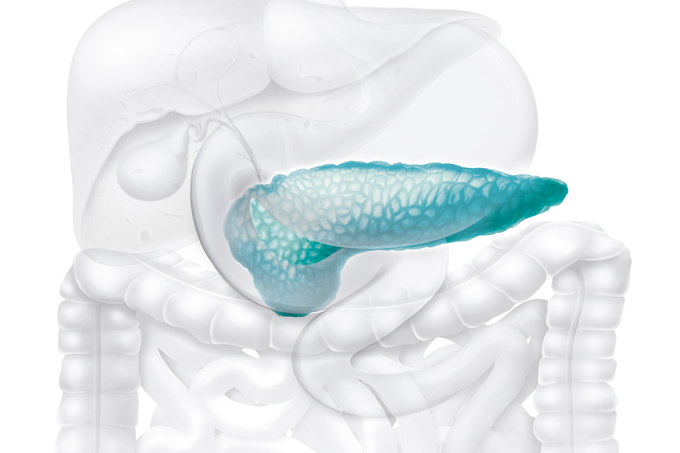 Tratamento para câncer de pâncreas