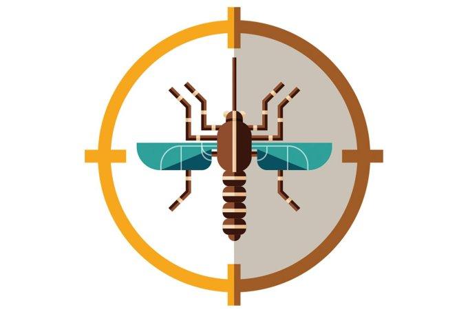 Como diferenciar Covid e dengue pelos sintomas