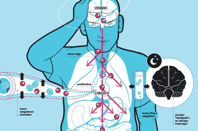 Infográfico mostrando mecanismo que leva ao desmaio