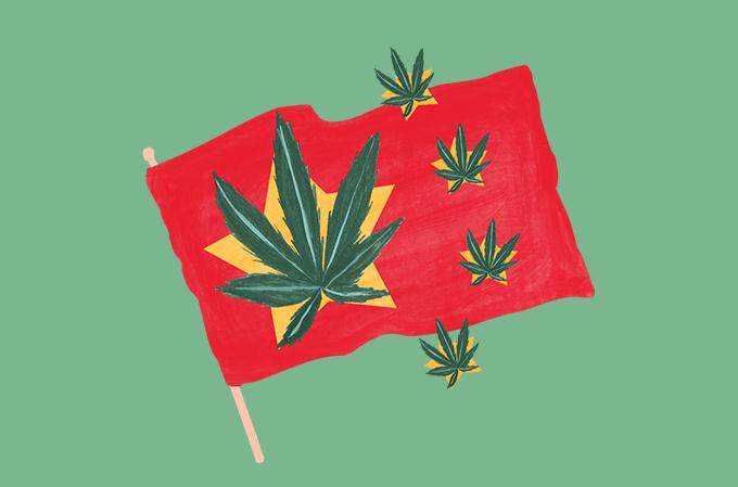 ilustração da bandeira da china com a planta cannabis estampada dentro