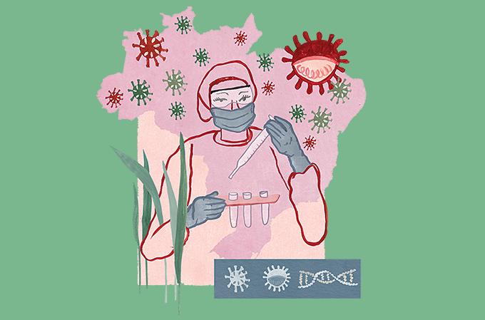 variantes do coronavírus