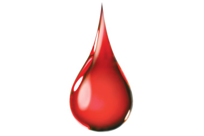 ferro no sangue