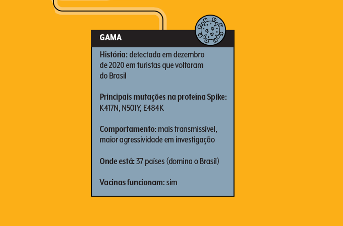 Quadro de informações sobre variante gama do Sars-Cov-2