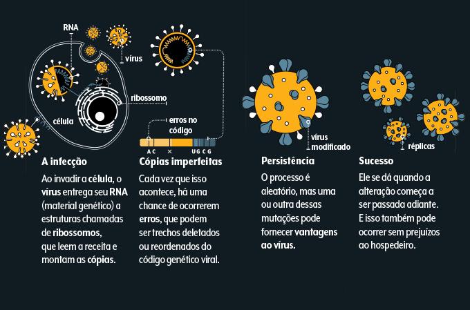 passo a passo ilustrado de como surge uma variante do coronavírus a partir de sua replicação