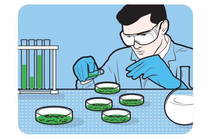 pesquisador em laboratório